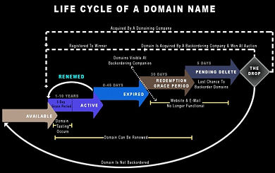Domain Name Life Cycle Example